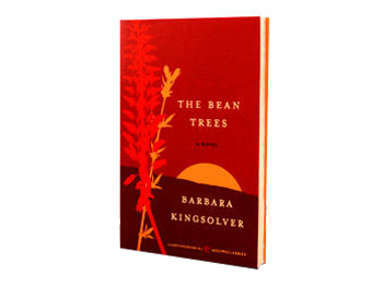 symbols and motifs of the bean tree by barbara kingsolver