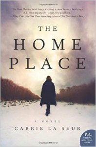 The Home Place paperback