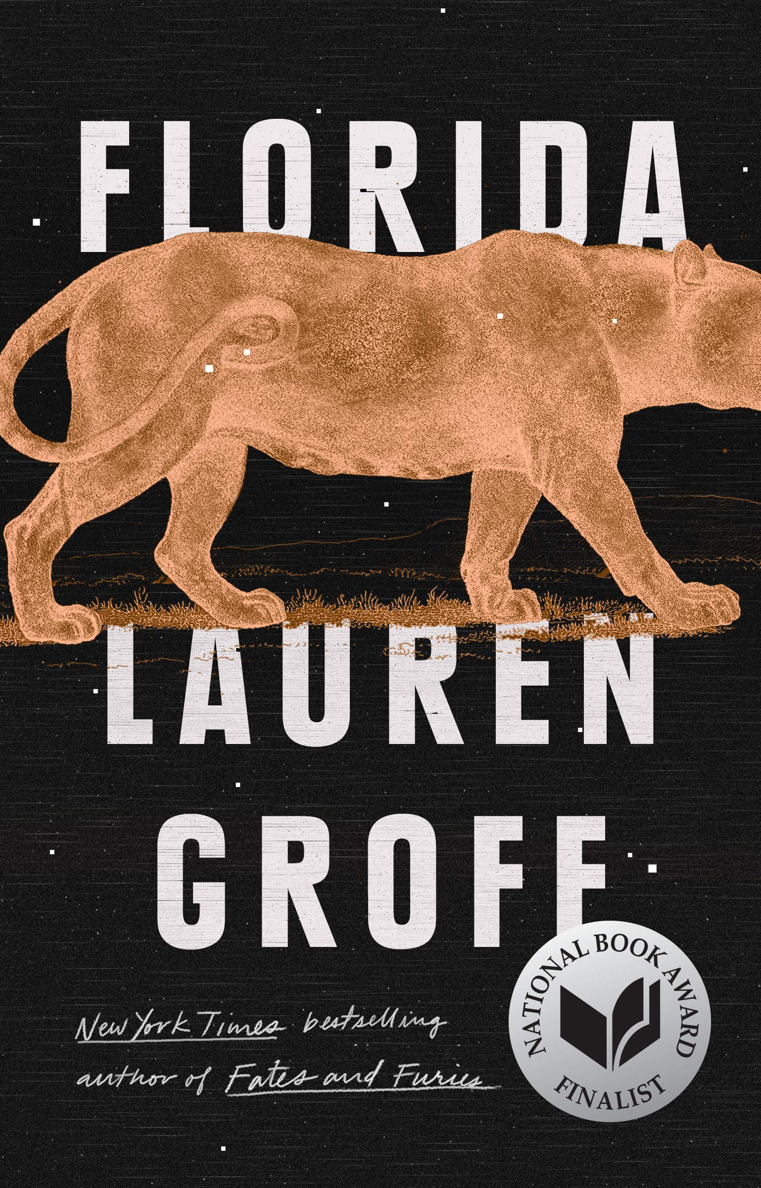 Groff's FLORIDA wins Story Prize